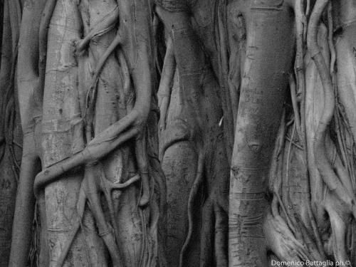 139-xcms_label_galleryriflessioni e percorsi low-11.jpg